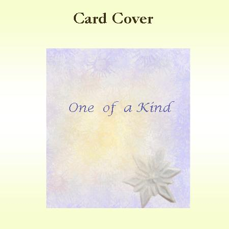 One of a Kind Card Cover